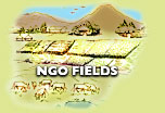ngo fields icon